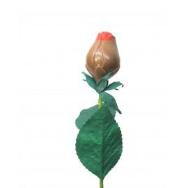 Rose en Chocolat au lait