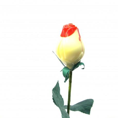 Rose en Chocolat blanc